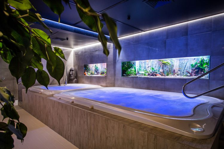 Wellnessdag bij Thermen Dilbeek in België (2 p.)