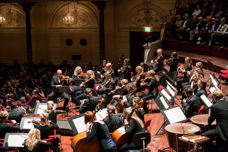 Ontdek Nederlands Kamerorkest in Het Concertgebouw
