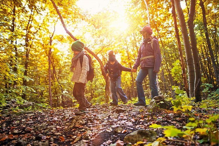 Herfstvakantie op een Oostappenpark naar keuze (4-6 p.)