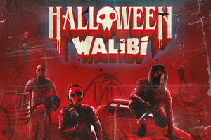 Tickets pour Halloween à Walibi Belgium à Wavre (2 p.)