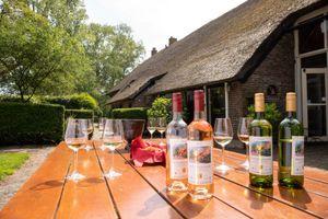 Wijnproeverij voor op De Kasteelhoeve, Overijssel (4p.)