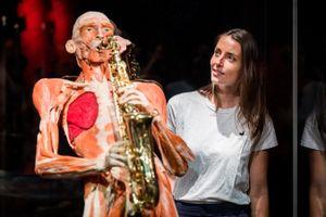 Body Worlds: op reis door het menselijk lichaam (2 p.)