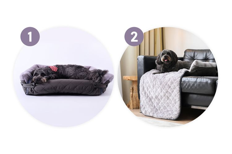 Honden- en kattenmand (op 2 manieren te gebruiken)