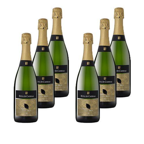 6 flessen Hoya de Cadenas Cava Organic (750cl)