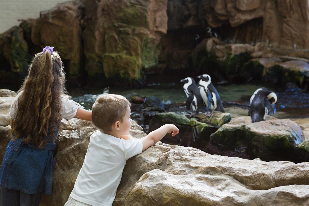 Dagje uit naar de dierentuin