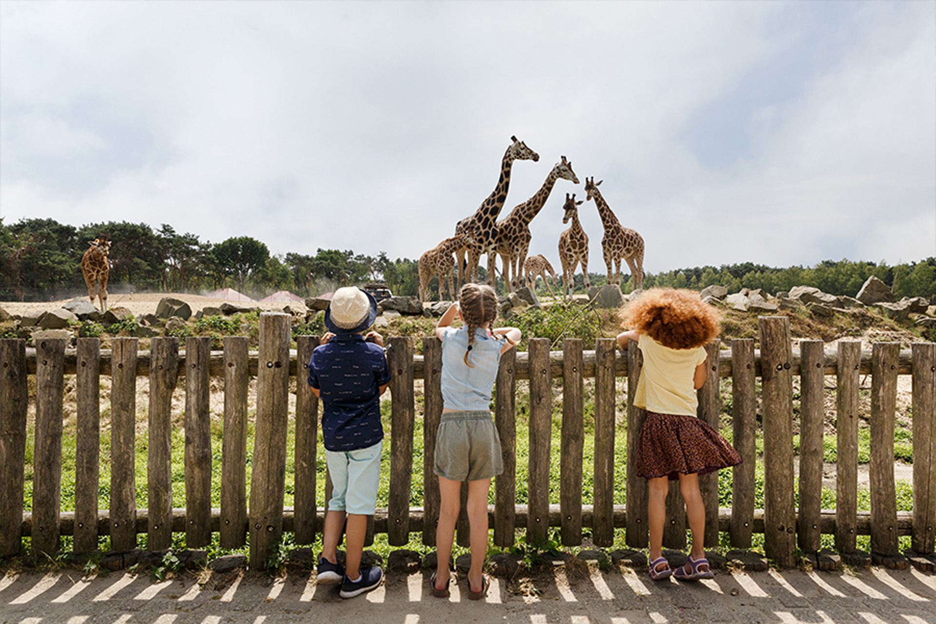 Dierentuin Safaripark Beekse Bergen