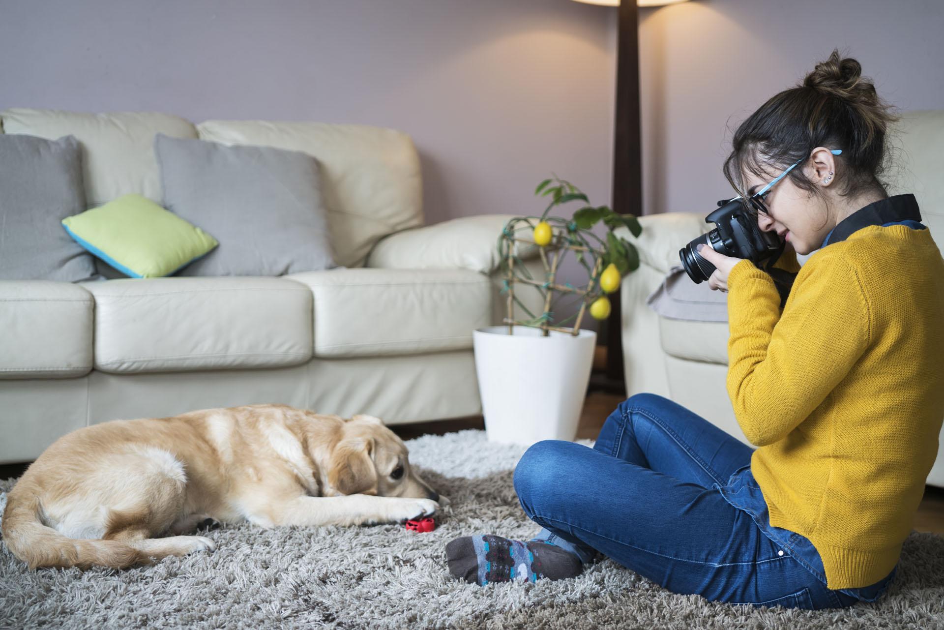 cursus fotografie huisdieren