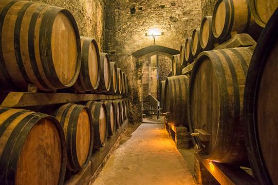 Wijnmuseum Arnhem wijnkelder VakantieVeilingen